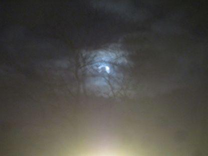 Moon over Rotterdam.