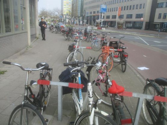 Bikes everywhere (well, it is Holland after all).