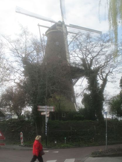 The mighty windmill.