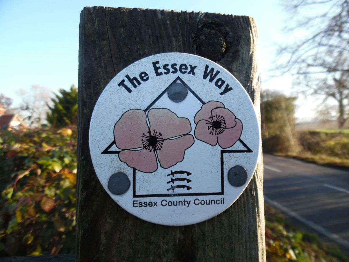 The only Way is Essex – the slightly easier way.