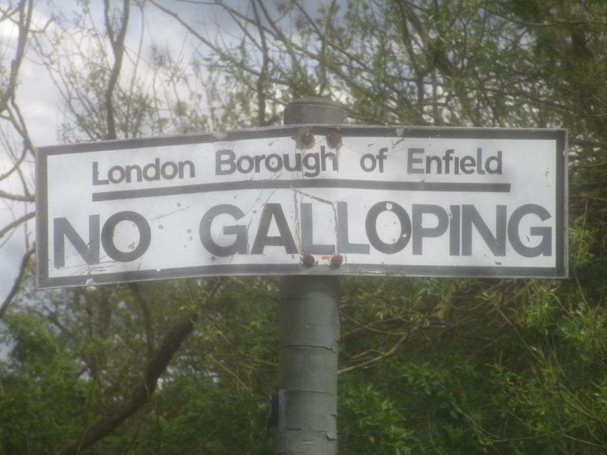 Parks, paths and pubs – London LOOP4.
